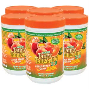 0004248_btt-20-citrus-peach-fusion-480-g-canister-6-pack_300